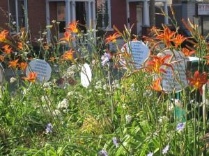 2012 July garden & buskers 005